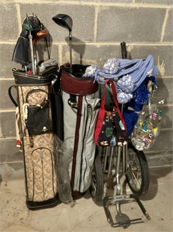 Golf Clubs and Ball lot