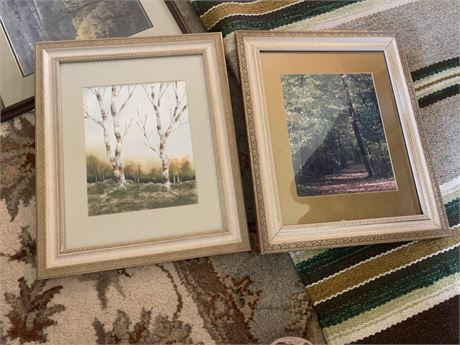 White Birch and Forest at Dawn Prints in Matching Frames  14 x 17