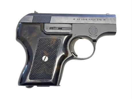 Smith and Wesson .22 Cal Pistol