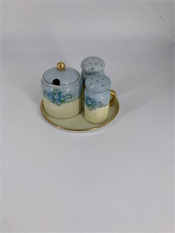 Hand painted Forget Me Not Salt and Pepper