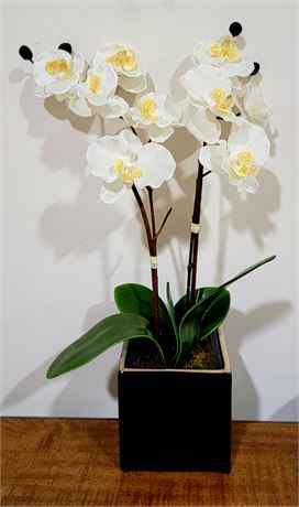 Pretty potted Faux Orchid plant